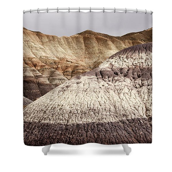 Petrified Forest National Park 1 Shower Curtain