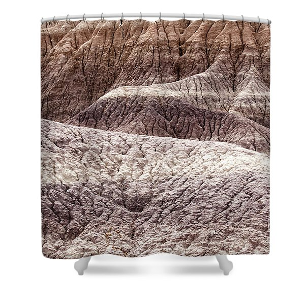 Petrified Forest National Park 3 Shower Curtain