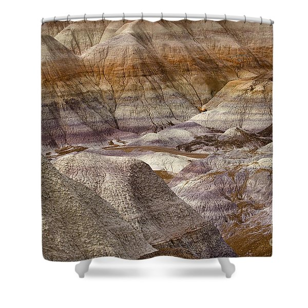 Petrified Forest National Park 4 Shower Curtain