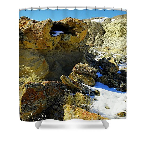 Petrified Log Bisti Badlands Shower Curtain