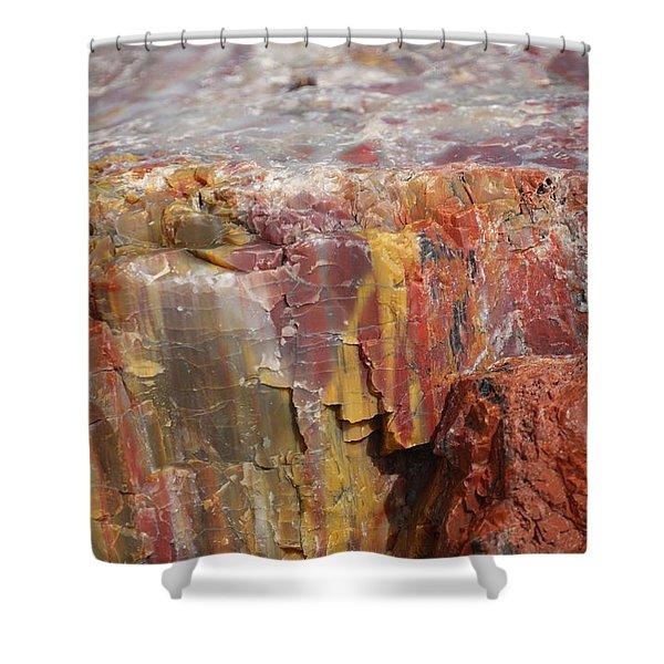 Petrified Wood 2 Shower Curtain