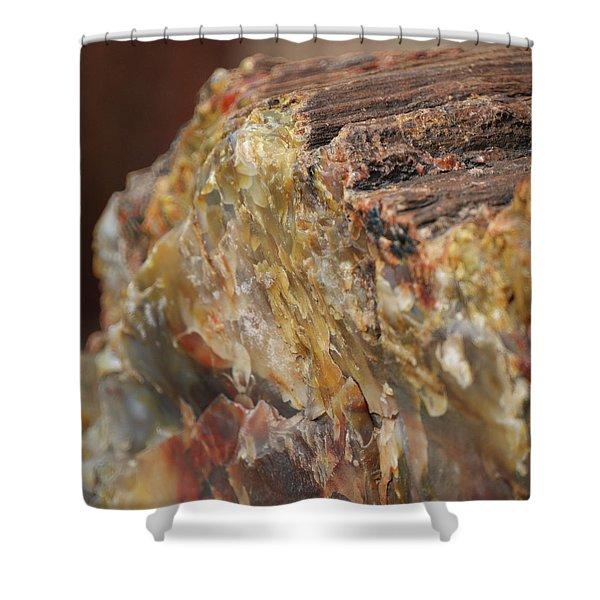 Petrified Wood Shower Curtain