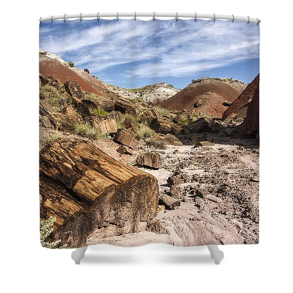Petrified Wood In The Painted Desert Shower Curtain