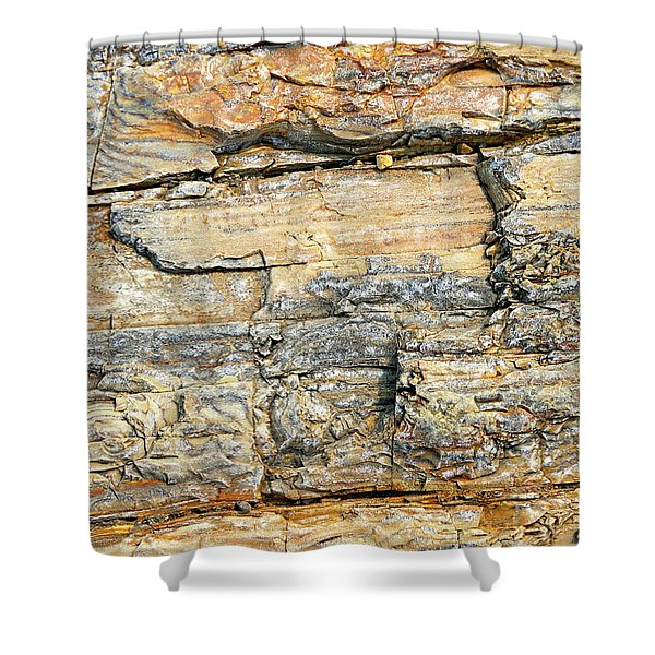 Petrified Wood Nature Abstract Shower Curtain