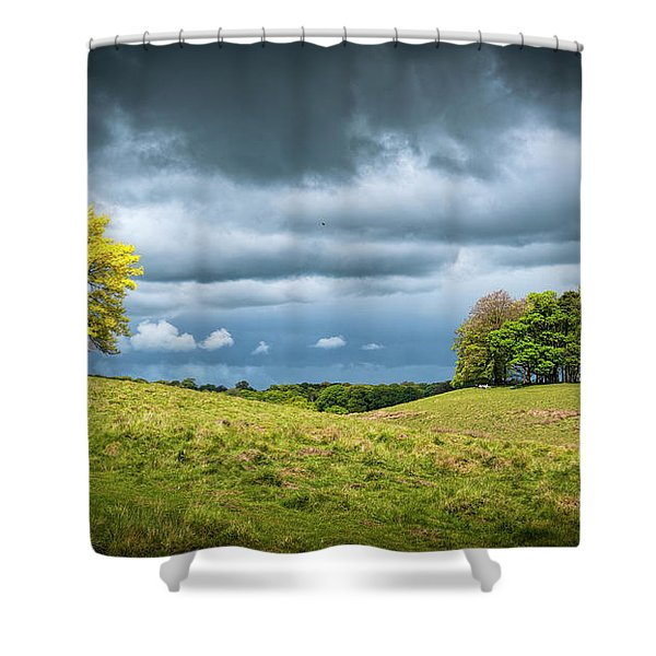 Shower Curtain featuring the photograph Petworth Dark And Light by Michael Hope