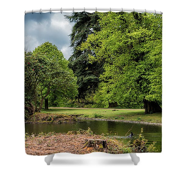Shower Curtain featuring the photograph Petworth Lake With Dog by Michael Hope