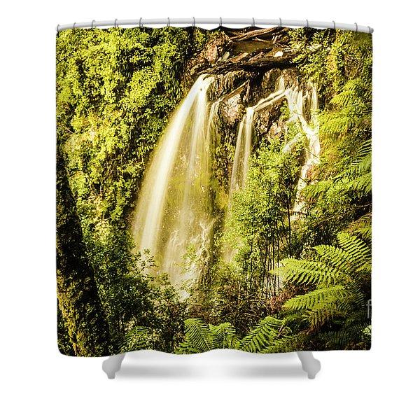 Philosopher Falls, Western Tasmania Shower Curtain
