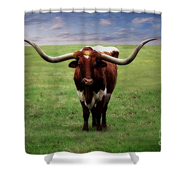 Photo Texas Longhorn A010816 Shower Curtain
