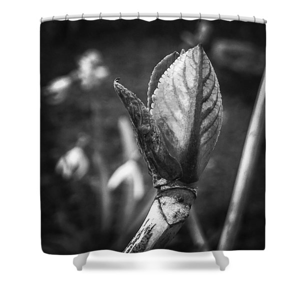 #photoshopexpress #monochrome #bnw Shower Curtain