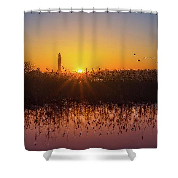 Phragmites Reflections Shower Curtain