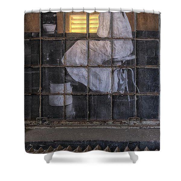 Shower Curtain featuring the photograph Physician In The Window by Tom Singleton