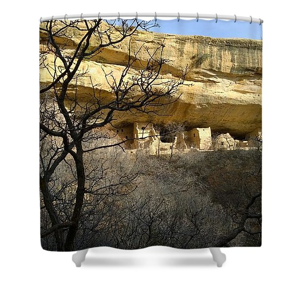 Pic 5 Shower Curtain