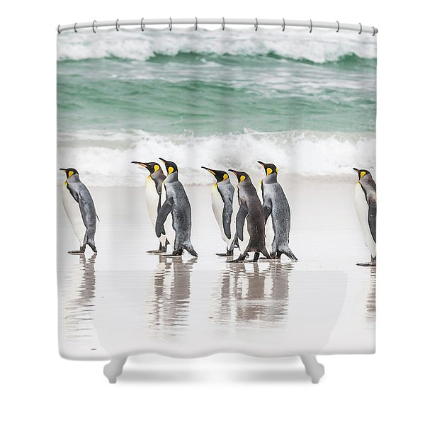 Pied Piper. Shower Curtain
