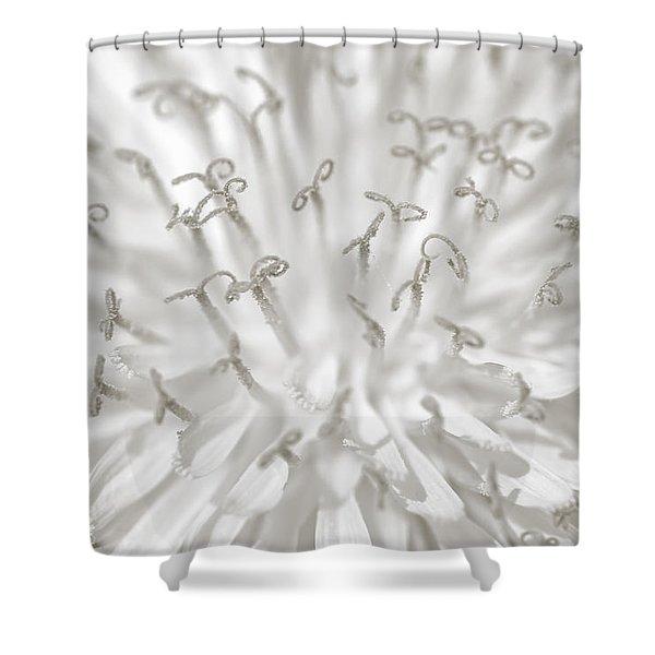 Pienene Shower Curtain