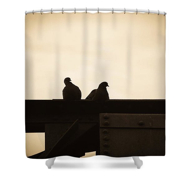 Pigeon And Steel Shower Curtain