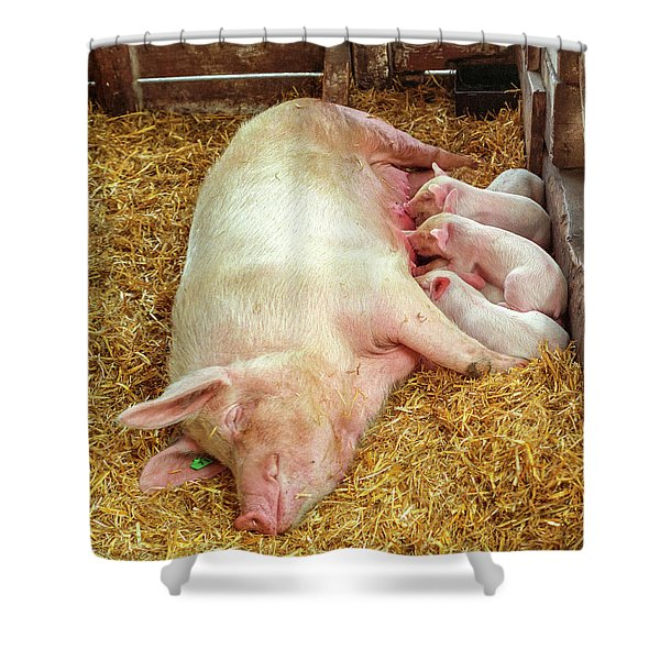 Piglet Feeding Time Shower Curtain