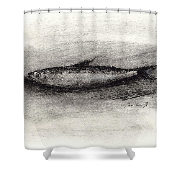 Pilchard Drawing Shower Curtain