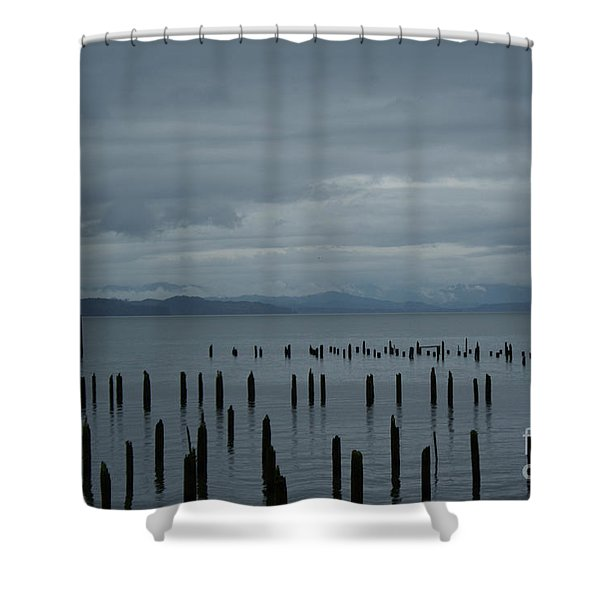 Pilings On Columbia River Shower Curtain