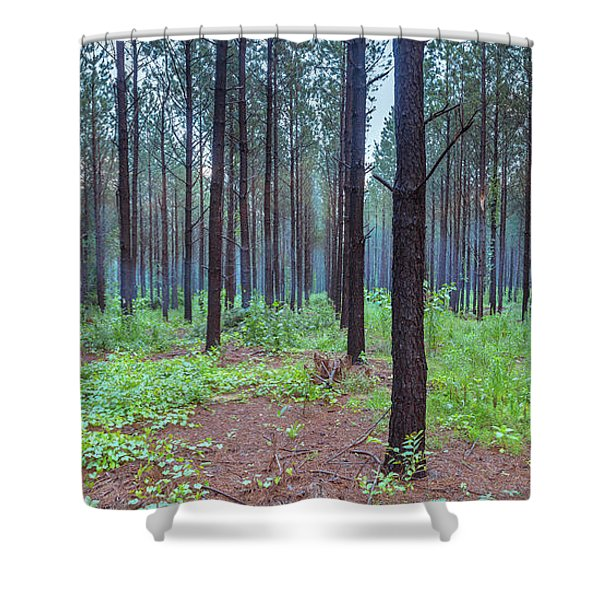 Shower Curtain featuring the photograph Pine Grove And Fog In Charlotte Nc Panorama by Ranjay Mitra