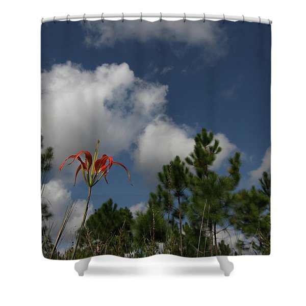 Pine Lily And Pines Shower Curtain
