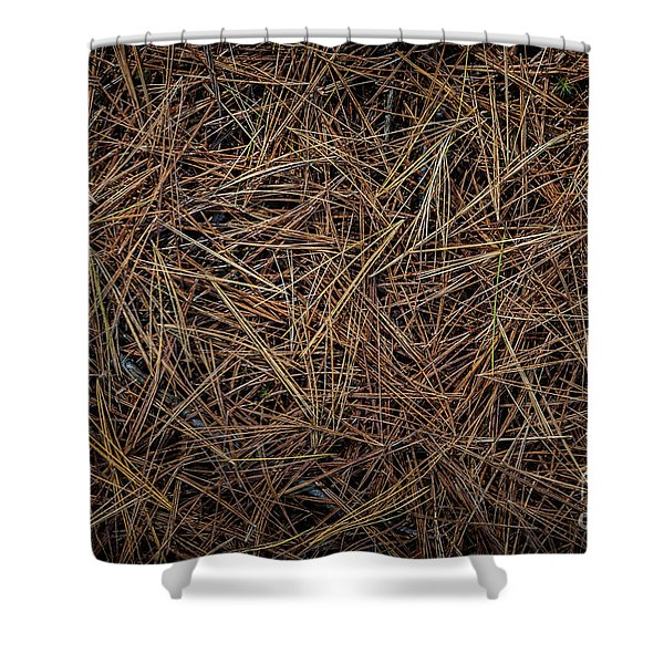 Pine Needles On Forest Floor Shower Curtain