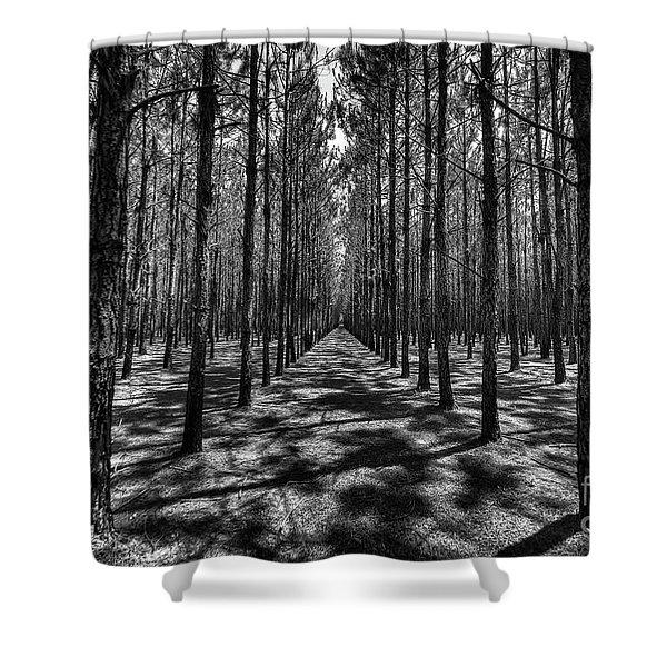 Pine Plantation Wide Shower Curtain