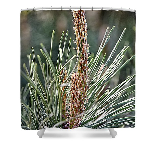 Pine Shoots Shower Curtain