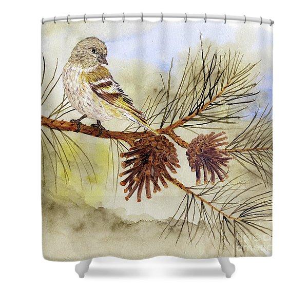 Pine Siskin Among The Pinecones Shower Curtain