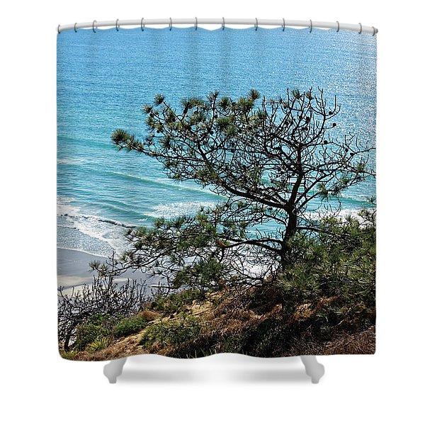 Pine Tree On Coast Shower Curtain