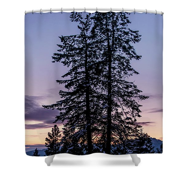Shower Curtain featuring the photograph Pine Tree Silhouette    by Lester Plank