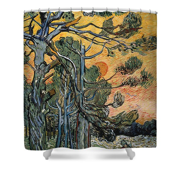 Pine Trees At Sunset Shower Curtain