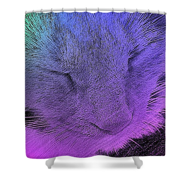 Pineapple Sleeping 1 Shower Curtain