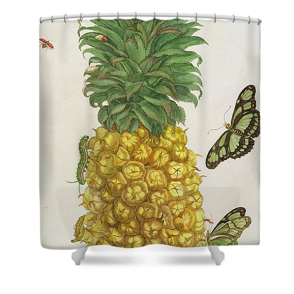 Pineapple With Caterpillar And Butterflies Shower Curtain