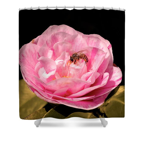 Pink And Bee Shower Curtain