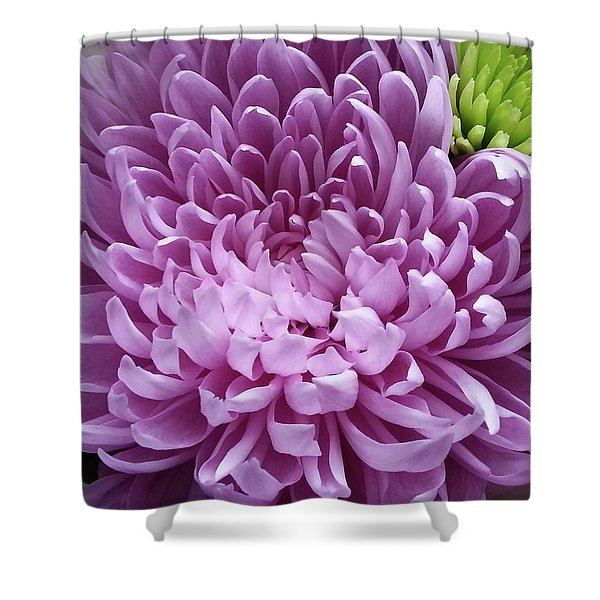 Pink And Green Defined Shower Curtain