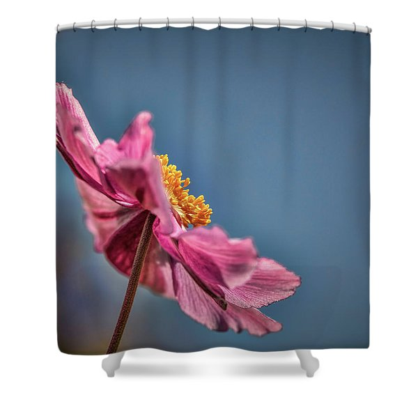 Pink And Yellow Profile #h8 Shower Curtain