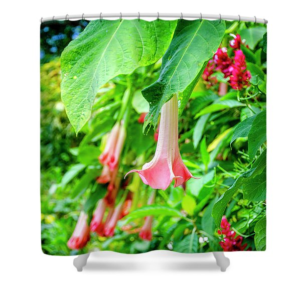 Pink Bell Flowers Shower Curtain