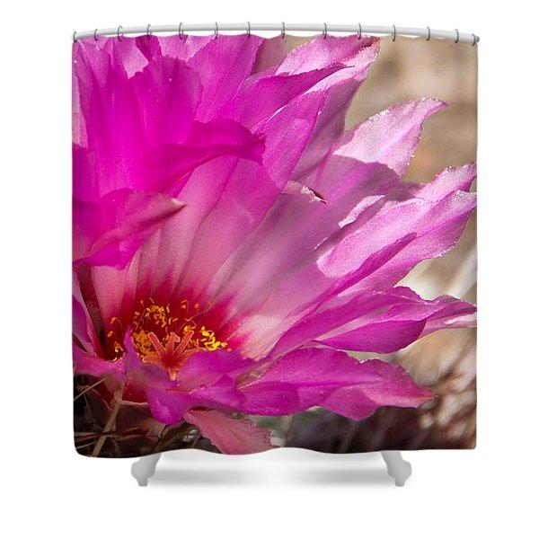 Pink Cactus Flower Shower Curtain