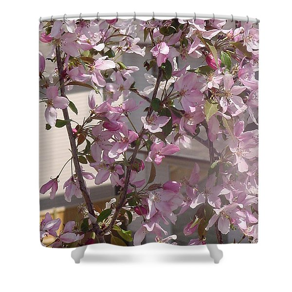 Pink Crabapple Branch Shower Curtain
