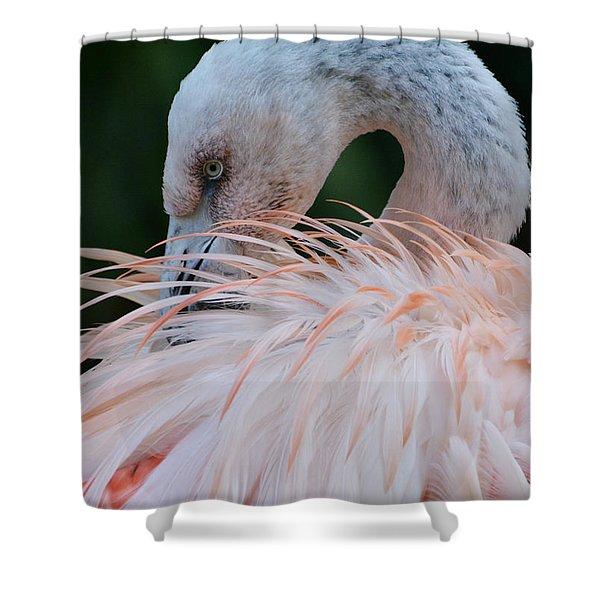Pink Darkness 2 Shower Curtain