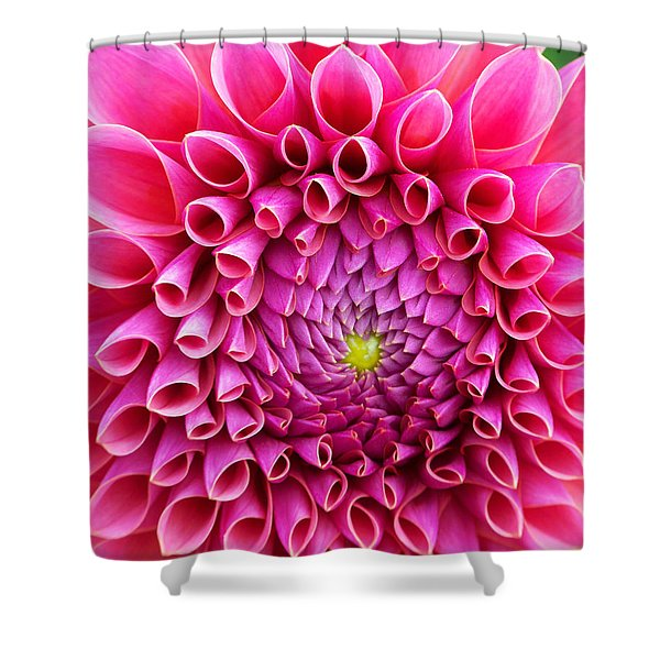 Pink Flower Close Up Shower Curtain