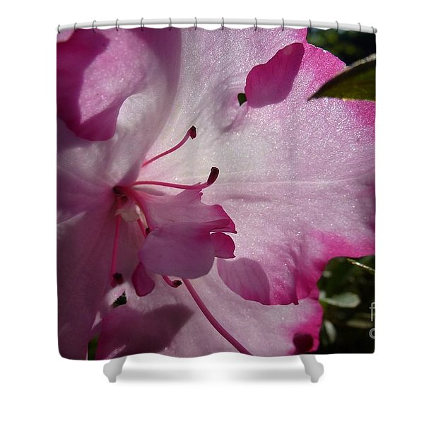 Pink Flowers 1 Shower Curtain