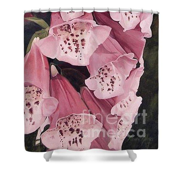 Pink Foxglove Shower Curtain