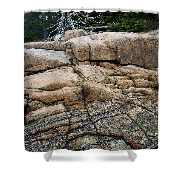 Pink Granite And Driftwood At Schoodic Peninsula In Maine  -4672 Shower Curtain