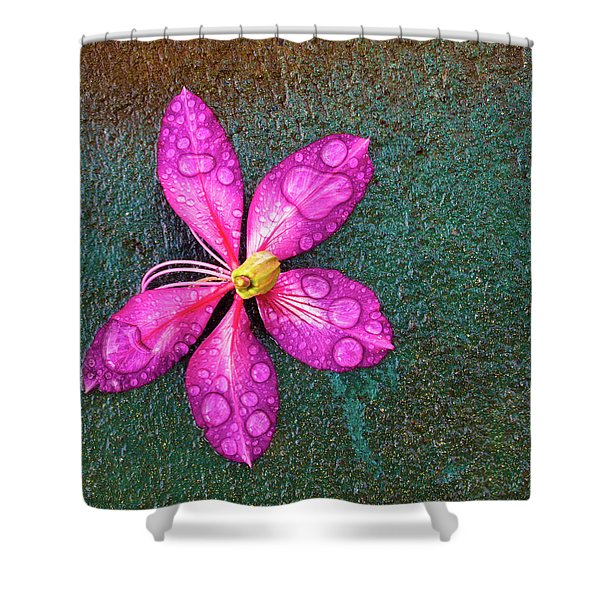 Pink Orchid Flower Shower Curtain