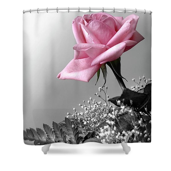Pink Petals Shower Curtain by Carlos Caetano