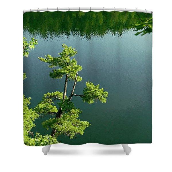 Pink Pine Shower Curtain