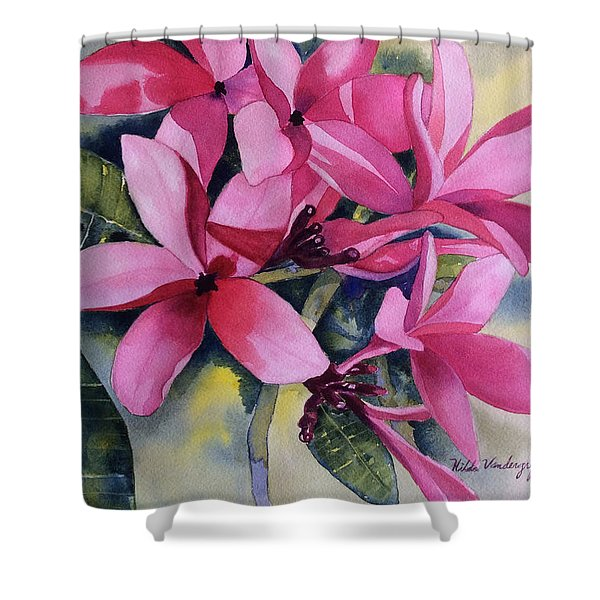 Pink Plumeria Flowers Shower Curtain