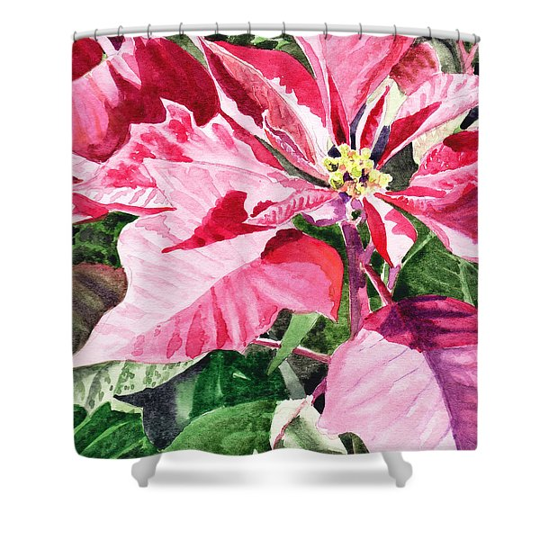 Pink Poinsettia Plant Shower Curtain