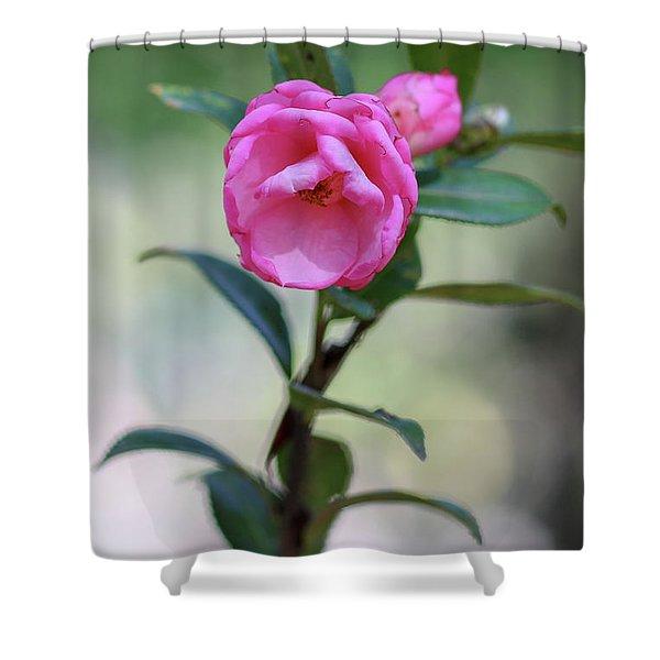 Pink Rose Flower Shower Curtain